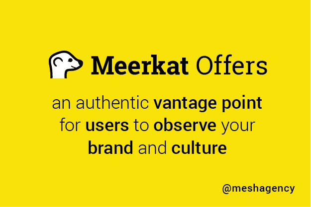 Top Social Media Network for Content Marketers: Meerkat